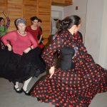 Flamenco Ⓒ FRIEDA